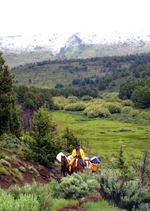 A man leading a pack string of horses rides up a hill out of a lush green valley as grey clouds cover the sky above.